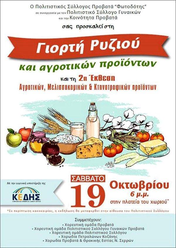Γιορτή Ρυζιού και 2η Έκθεση παραδοσιακών προϊόντων στο Προβατά Σερρών - η Αφίσα της εκδήλωσης