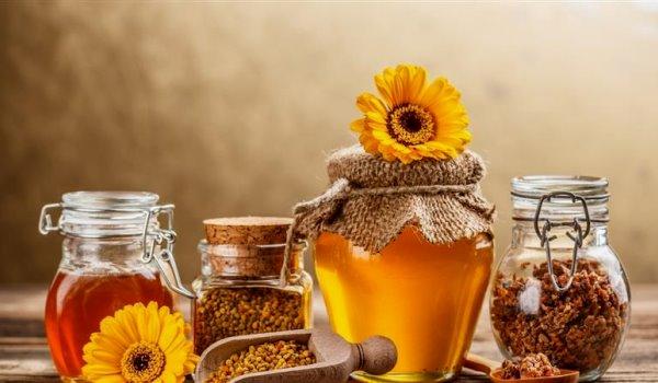 Τριήμερη Γιορτή μελιού και γεωργικών προϊόντων στο Ελαιόφυτο Αγρινίου