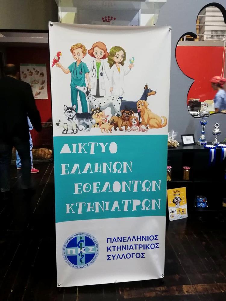 Μαζικές στειρώσεις αδέσποτων ζώων στο Δήμο Κοζάνης από το Δίκτυο Ελλήνων Εθελοντών Κτηνιάτρων