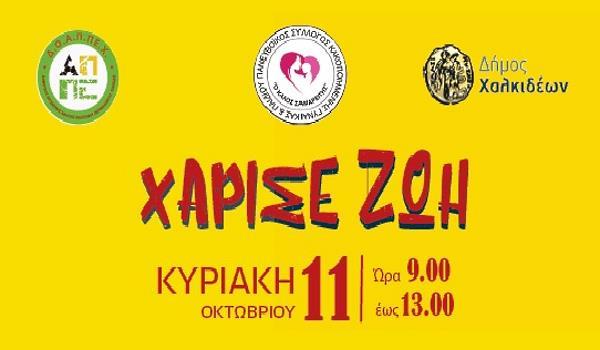 Εθελοντική Αιμοδοσία και Bazaar αλληλεγγύης στο Δήμο Χαλκίδας
