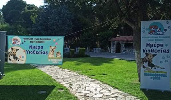 «Ημέρα Υιοθεσίας» αδέσποτων με μεγάλη επιτυχία στον Δήμο Διονύσου