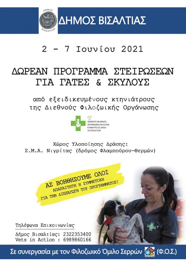 Πρόγραμμα μαζικών στειρώσεων σε αδέσποτα από τον Δήμο Βισαλτίας Αφίσα